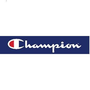 Champion pole dance